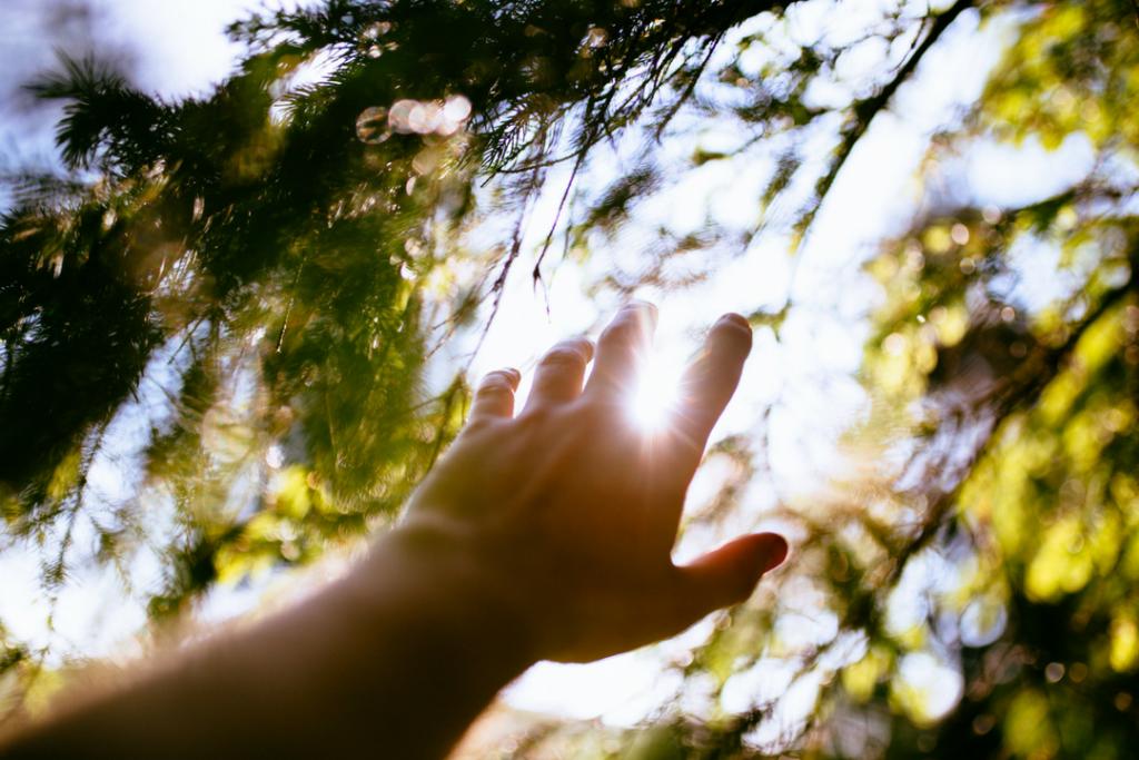 hand reaching up towards sunlight